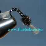 Black Buzzer, Fortynget