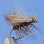 Elk Hair Emerger Olive