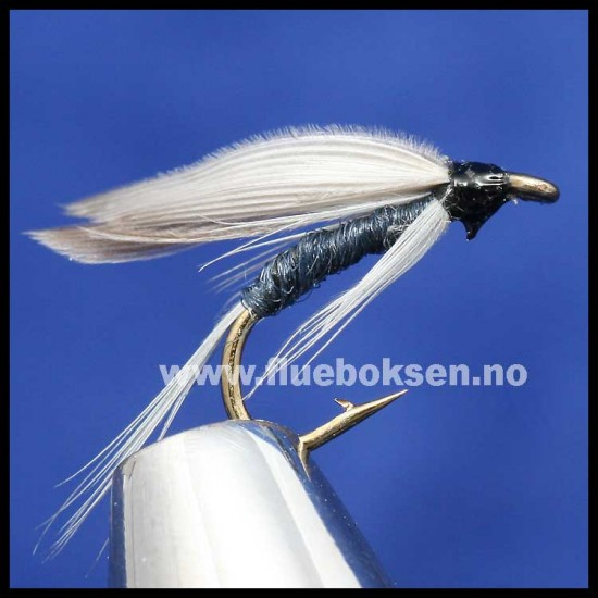 Blue Dun, våtflue