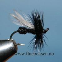 Flygemaur, svart (ant)
