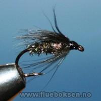 Black & Peacock Spider
