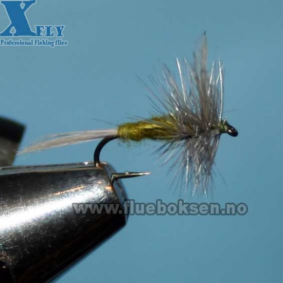 Blue Wing Olive (xfly)