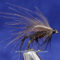 CDC Hopper bibio