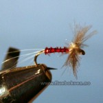 CDC Rusty Spinner