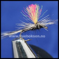 Indicator Spinner Tricolor