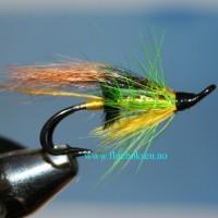 Green Highlander, dobbel krok