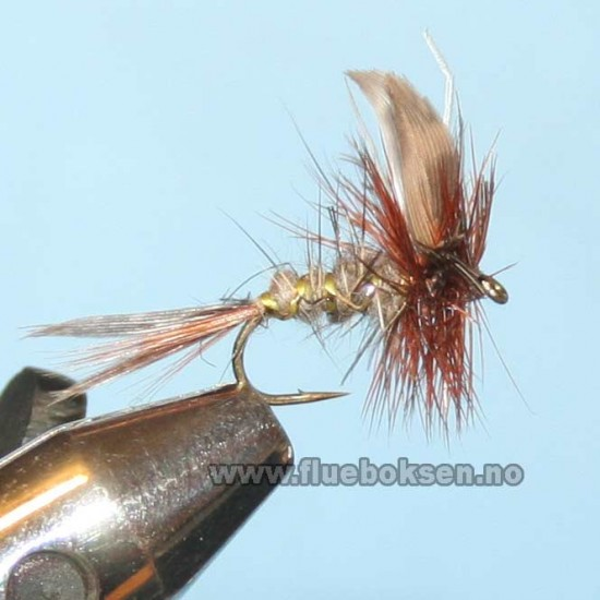 March Brown Winged