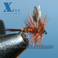 March Brown winged, xfly