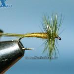 Midge Olive