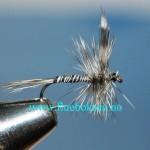Mosquito (mygg)