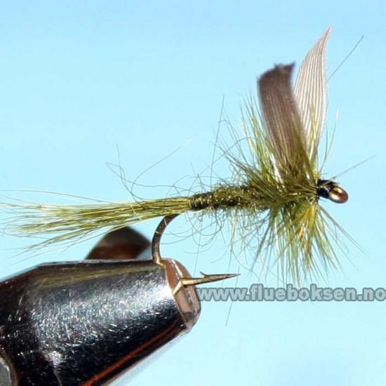 Olive Dun, Winged