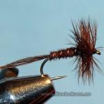 Pheasant tail, tørrflue