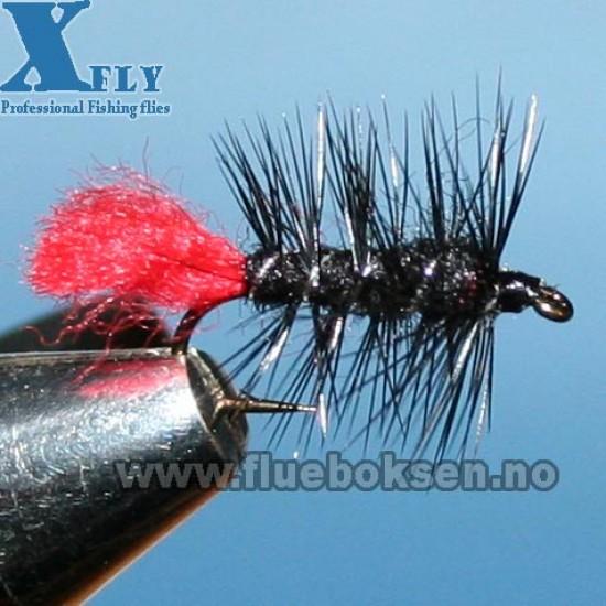 Zulu (våt), xfly